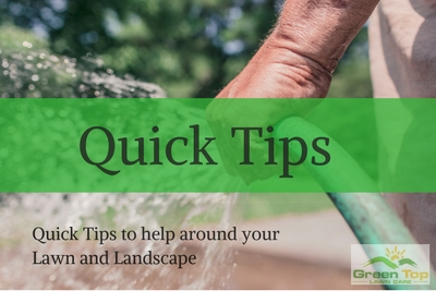 Click for Quick Tips