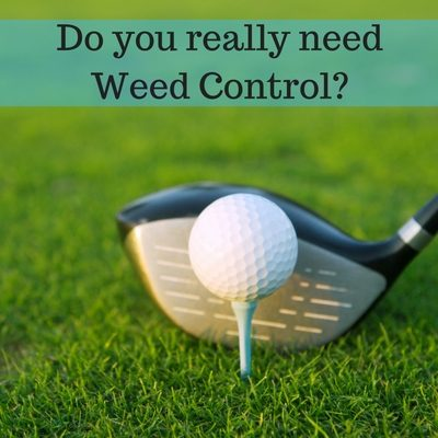 Do You Really Need Weed Control?