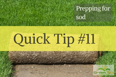 Quick Tip #11:  Prepping for Sod