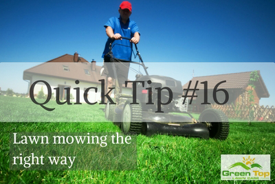 Lawn Mowing the Right Way